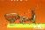 Гайка-барашек М18 ОСТ 5.9306-79, гайка барашек закрытого типа, гайка барашек из бронзы