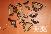Гайка-барашек М14 ОСТ 5.9306-79, гайка барашек закрытого типа, гайка барашек из нержавеющей стали